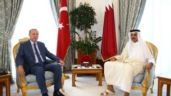 Cumhurbaşkanı Erdoğan ve Katar Emiri Şeyh Temim - Sputnik Türkiye