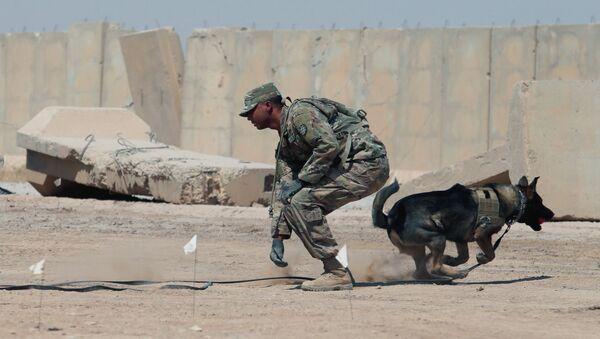 ABD askeri- Irak - Sputnik Türkiye