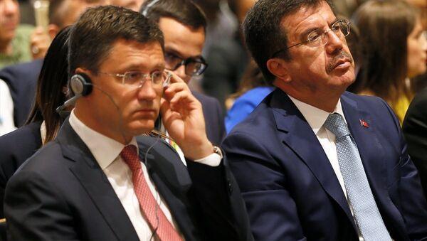 Türkiye Ekonomi Bakanı Nihat Zeybekci - Rusya Enerji Bakanı Aleksandr Novak - Sputnik Türkiye