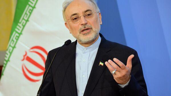İran Atom Enerjisi Örgütü Başkanı Ali Ekber Salihi - Sputnik Türkiye