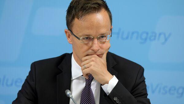 Macaristan Dışişleri Bakanı Péter Szijjarto - Sputnik Türkiye