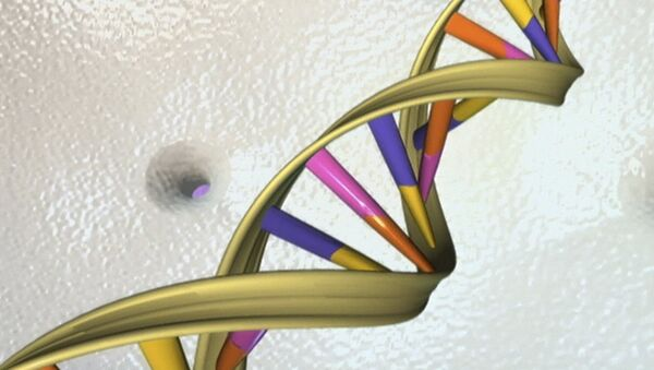 A DNA double helix is seen in an undated artist's illustration released by the National Human Genome Research Institute to Reuters on May 15, 2012 - Sputnik Türkiye