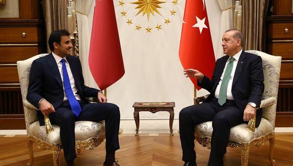 Cumhurbaşkanı Recep Tayyip Erdoğan ile Katar Emiri Şeyh Temim bin Hamed El Sani - Sputnik Türkiye