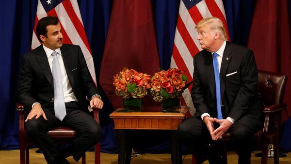 ABD Başkanı Donald Trump ile Katar Emiri Temim bin Hamad El Sani  - Sputnik Türkiye