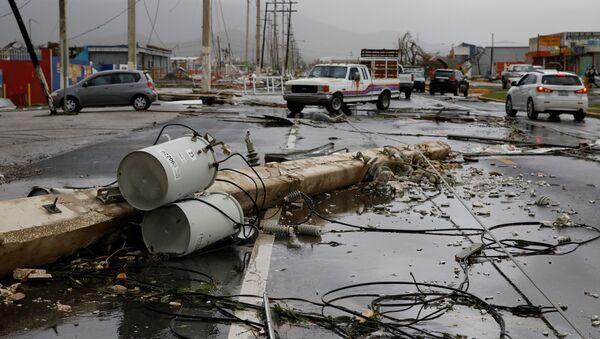 Maria Kasırgası- Porto Riko - Sputnik Türkiye