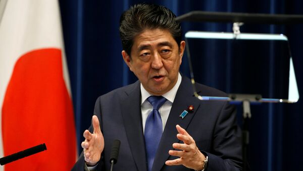 Japonya Başbakanı Şinzo Abe - Sputnik Türkiye