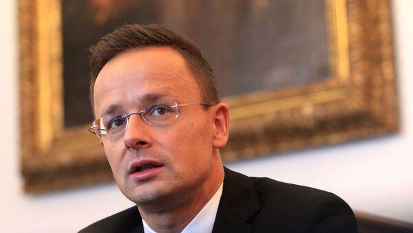 Macaristan Dışişleri Bakanı Peter Szijjarto - Sputnik Türkiye