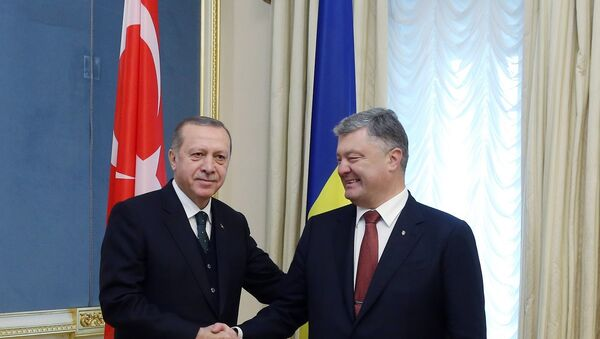 Cumhurbaşkanı Recep Tayyip Erdoğan ve Ukrayna Devlet Başkanı Petro Poroşenko - Sputnik Türkiye
