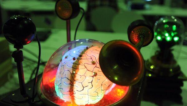 Beyin şeklinde tasarlanmış bir bilgisayar - Sputnik Türkiye