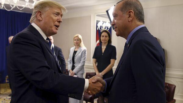 ABD Başkanı Donald Trump- Cumhurbaşkanı Recep Tayyip Erdoğan - Sputnik Türkiye