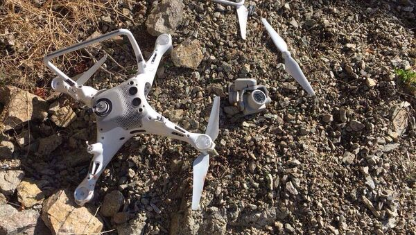 Artvin'de kartalın düşürdüğü drone - Sputnik Türkiye
