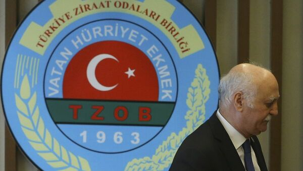 Türkiye Ziraat Odaları Birliği (TZOB) Başkanı Şemsi Bayraktar - Sputnik Türkiye