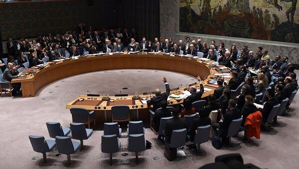 Birleşmiş Milletler Güvenlik Konseyi toplantısı - Sputnik Türkiye