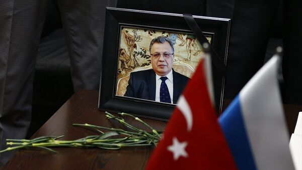 Andrey Karlov.Tilda - Sputnik Türkiye