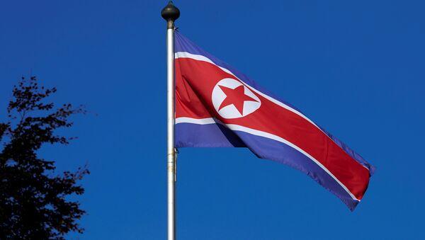 Kuzey Kore bayrağı - Sputnik Türkiye