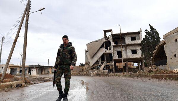 Suriye hükümet güçleri - Sputnik Türkiye