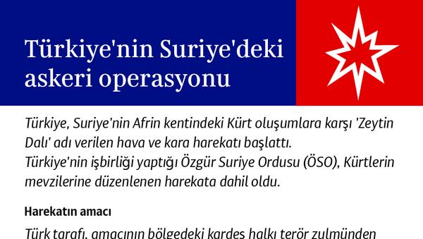 Türkiye'nin Suriye'deki askeri operasyonu - Sputnik Türkiye