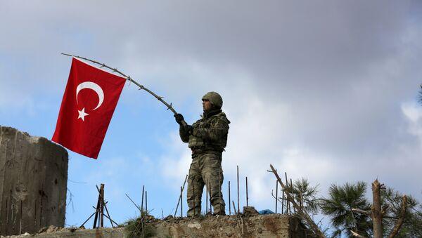 Zeytin Dalı Operasyonu- Burseya Dağı - Sputnik Türkiye