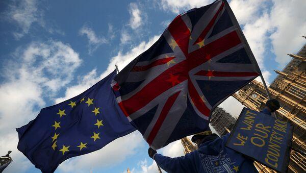 İngiltere parlamentosu önünde Brexit karşıtı bir gösterici - Sputnik Türkiye