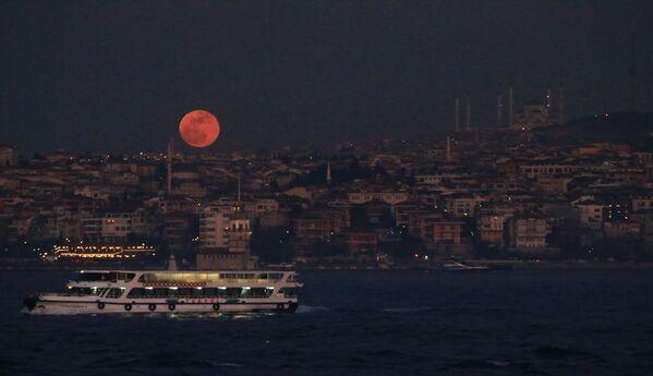 Süper Kanlı Mavi Ay Tutulması'ndan kareler - Sputnik Türkiye