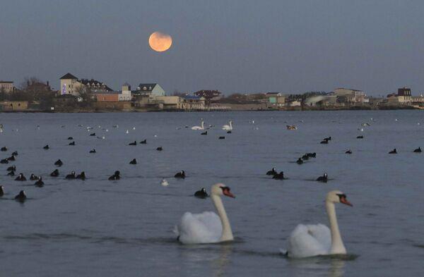 Süper Kanlı Mavi Ay Tutulması, Kırım'ın Yevpatoriya şehrindeki Karadeniz kıyılarından da gözlendi. - Sputnik Türkiye