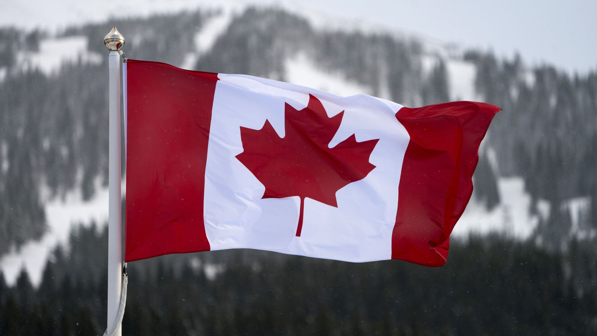 Kanada bayrağı - Sputnik Türkiye, 1920, 15.06.2021
