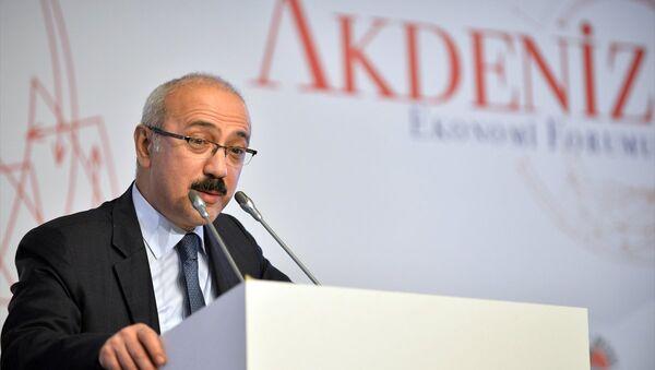 Kalkınma Bakanı Lütfi Elvan - Sputnik Türkiye