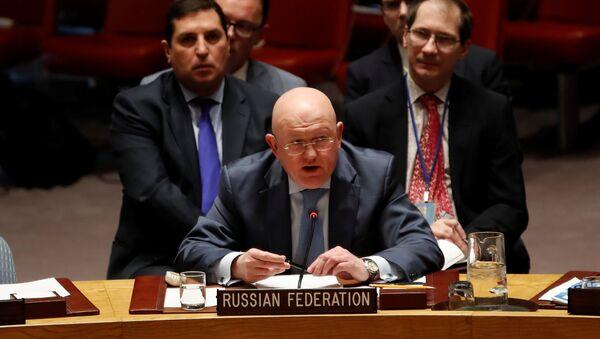 Rusya'nın Birleşmiş Milletler (BM) Daimi Temsilcisi Vasiliy Nebenzya - Sputnik Türkiye
