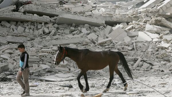 Afrin yıkım at çocuk - Sputnik Türkiye