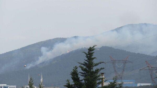 Aydos Ormanları yanıyor - Sputnik Türkiye