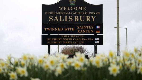 Salisbury hoşgeldin tabelası - Sputnik Türkiye