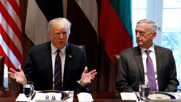 Donald Trump, James Mattis, Beyaz Saray, Baltık zirvesi, 3 Nisan 2018 - Sputnik Türkiye