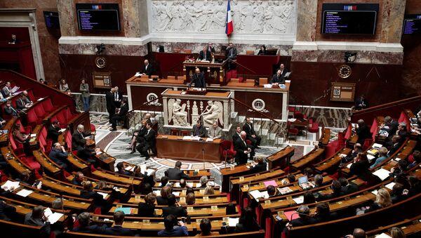 Fransa'da meclis Suriye operasyonunu tartıştı - Sputnik Türkiye