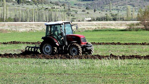 Gübre, tarım arazisi - Sputnik Türkiye