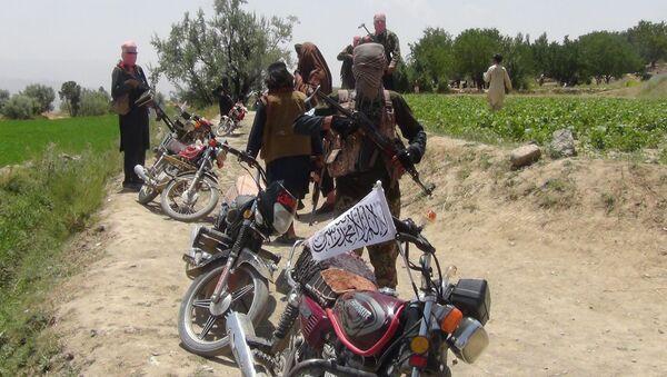Afghanistan, Paktia eyaleti, Gardez kenti, Ahmed Aba kırsalı, Taliban savaşçıları, 18 Temmuz 2017 - Sputnik Türkiye