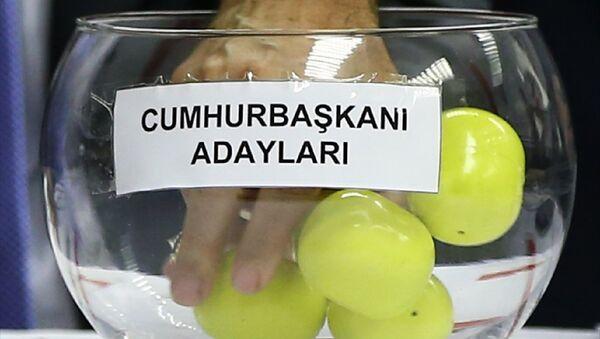 Cumhurbaşkanı adayları, 24 Haziran, seçim - Sputnik Türkiye