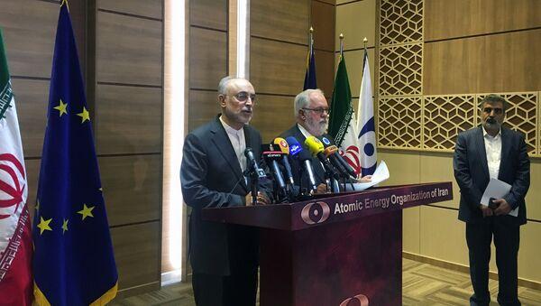 İran Atom Enerjisi Kurumu Başkanı Ali Ekber Salihi ile Avrupa Komisyonu'nun enerjiden sorumlu üyesi Miguel Arias Canete Tahran'da basın toplantısında - Sputnik Türkiye
