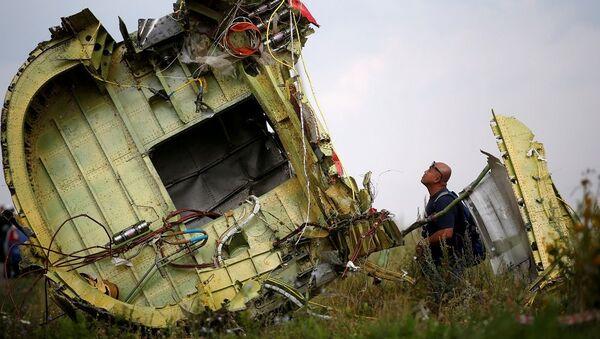 MH17 sefer sayılı yolcu uçağı - Sputnik Türkiye
