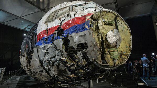 MH17 uçağının yeniden birleştirilen enkazı - Sputnik Türkiye