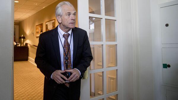 Beyaz Saray Ulusal Ticaret Konseyi Direktörü Peter Navarro - Sputnik Türkiye