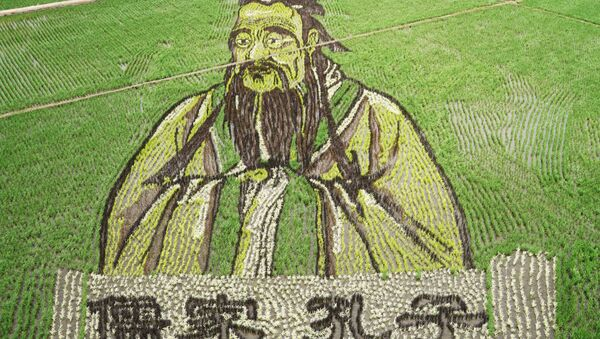 Çin'deki pirinç tarlalarında sanat eserleri - Sputnik Türkiye