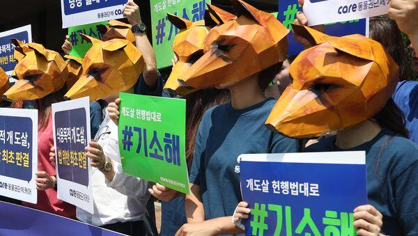 Köpeklerin eti için öldürülmesini Güney Kore'deki mahkeme binası önünde protesto eden hayvan hakları aktivistleri - Sputnik Türkiye