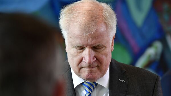 Almanya İçişleri Bakanı Horst Seehofer - Sputnik Türkiye