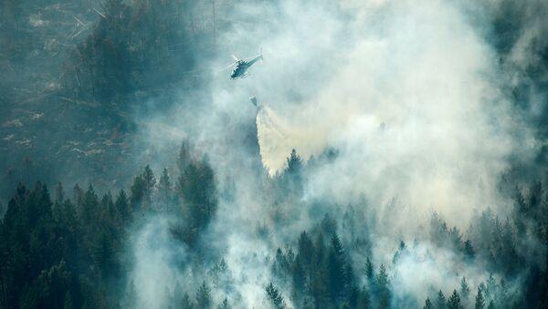 İsveç'te orman yangını - Sputnik Türkiye