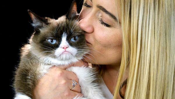 Dünyanın en ünlü kedileri - Sputnik Türkiye