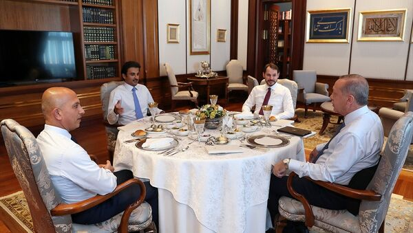 Cumhurbaşkanı Erdoğan ile görüşen Katar Emiri Sani, Türkiye'ye 15 milyar dolar doğrudan yatırım yapacaklarını bildirdi. - Sputnik Türkiye