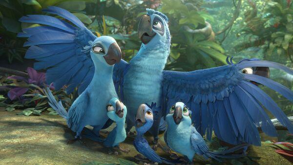 Brezilya'ya özgü soyu tükenen parlak mavi makav türünü 'Rio' çizgi filmi tüm dünyaya sevdirmişti. - Sputnik Türkiye