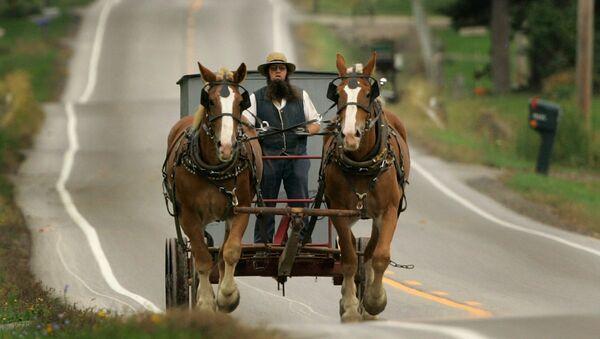 An Amish man drives his team of work horses down a road in Burton Township, Ohio - Sputnik Türkiye