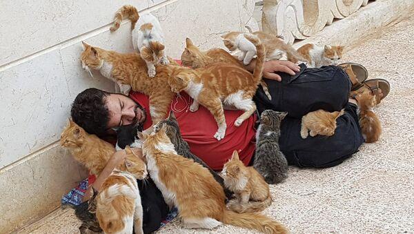 Suriyeli kedi sever - Sputnik Türkiye