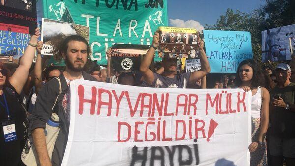 Büyükada'da fayton protestosu - Sputnik Türkiye